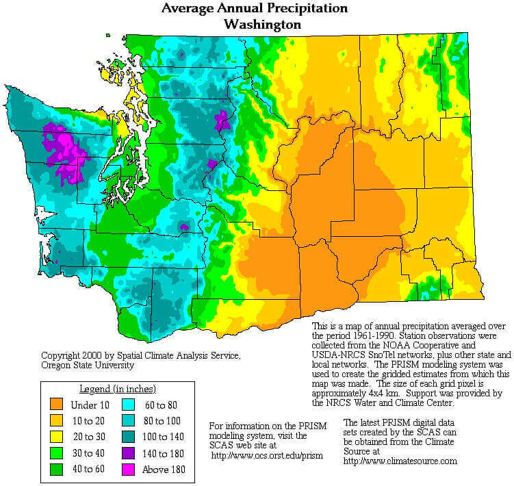 Washington State rainfall