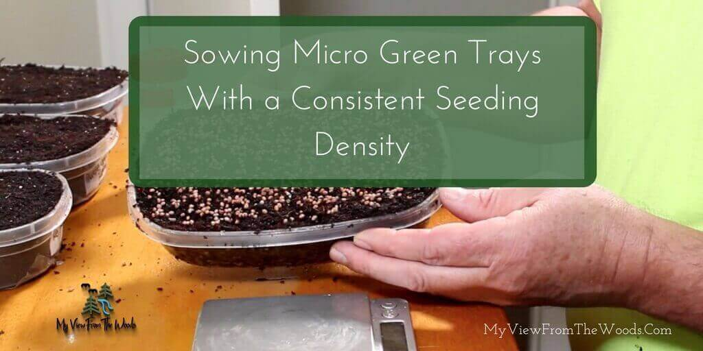 how to figure out seeding density for microgreens