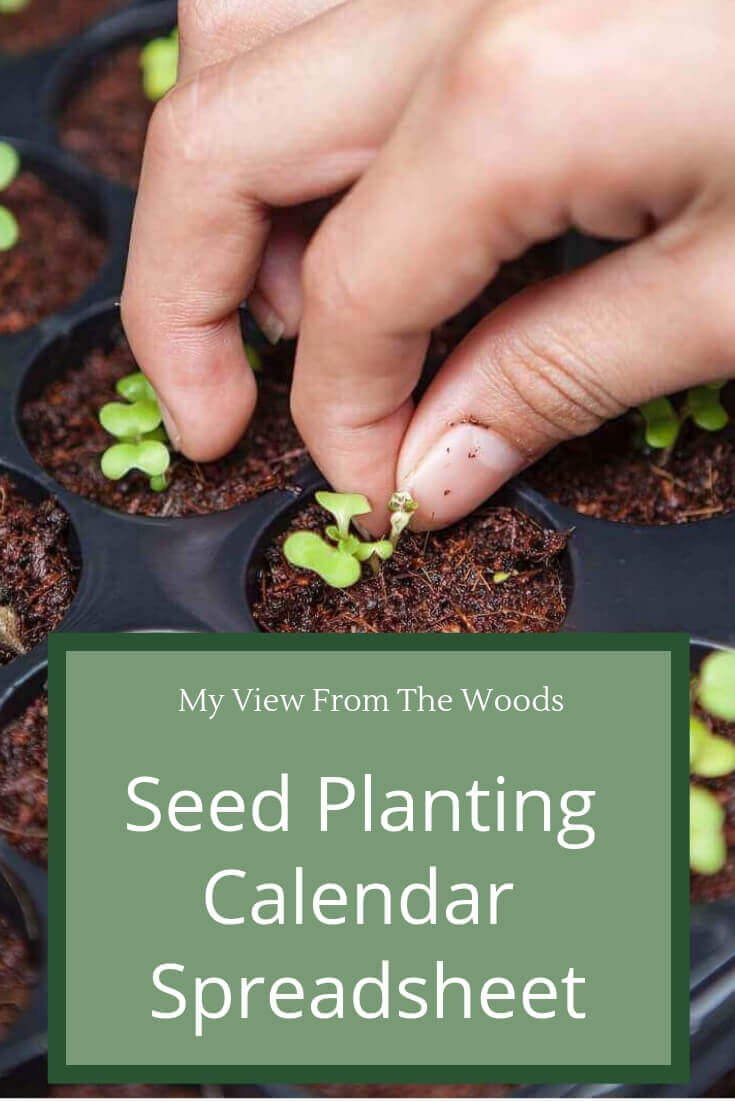 Seed Planting Calendar - My View From The Woods