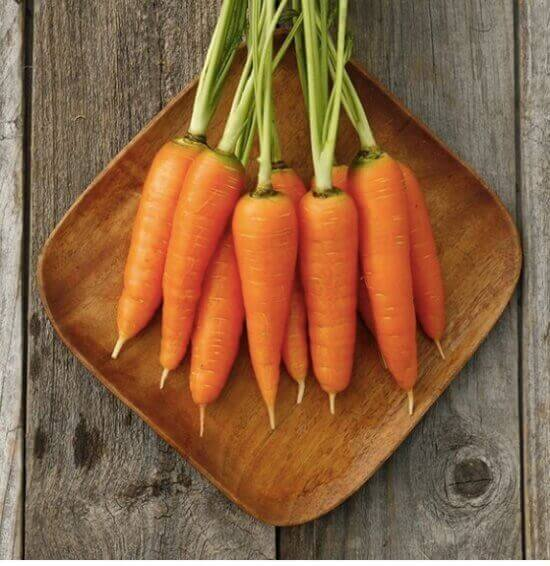 Heirloom Carrot Danvers 126