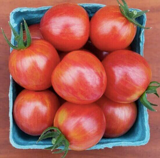 pink cherry tomatoes